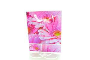 Пакет Angel Gifts подарунковий 22,5*28*10,5см МТ-09