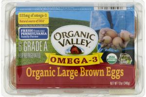Organic Valley Omega-3 Organic Large Brown Eggs - 6 CT