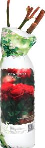 Сажданці троянди, Троянда Дабл Ділайт (Чайно-гібридна ДЕКОПЛАНТ, білий з малиновою каймою)(4611.002)