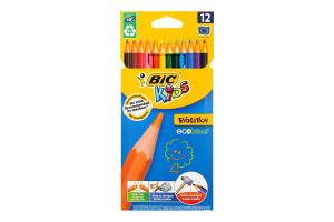Набор карандашей BIC Kids Evolution 12 цветов