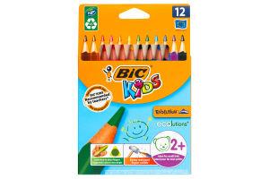 Набор треугольных карандашей BIC Kids Evolution 12 цветов