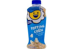 Kernel Season's Popping Corn
