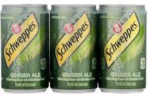 Schweppes Ginger Ale - 6 CT