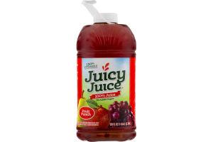 Juicy Juice 100% Juice Fruit Punch