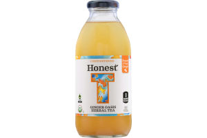 Honest Tea Unsweetened Ginger Oasis Herbal Tea