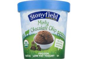 Stonyfield Low Fat Frozen Yogurt Minty Chocolate Chip