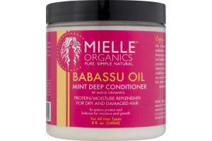 Mielle Organics Mint Deep Conditioner Babassu Oil