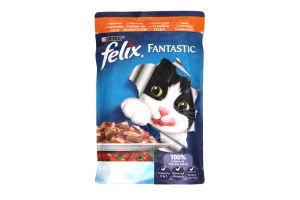Корм для котов с курицей и томатами кусочки в желе мягкая упаковка Felix Purina 100г