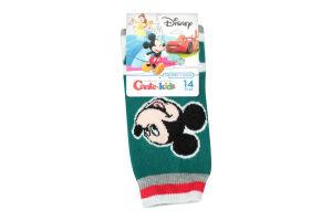 Носки дет Conte-kids Disney 17С126/1 т.бир р14 341