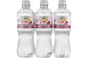 Canada Dry Sparkling Seltzer Water Pomegranate Cherry - 6 PK