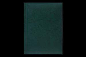 Щоденник недатований №BM.2008-04 Base Buromax 1шт