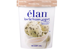 Elan Chocolate Chip Low Fat Frozen Yogurt