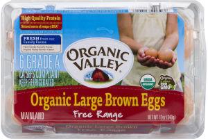 Organic Valley Free Range Organic Large Brown Eggs - 6 CT