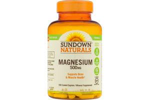 Sundown Naturals Magnesium 500 mg - 180 CT