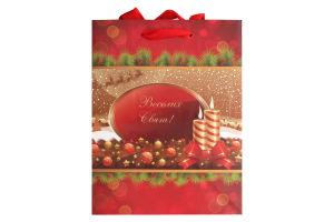 Пакет паперовий різдв. Happycom 18см*22см Економ