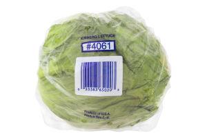 Ahold Iceberg Lettuce