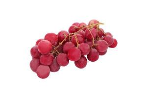 Виноград элитный розовый Ред Глоб