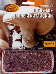 Мицелий зерновой Шиитаке белый китайский