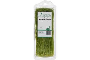 Mr. McGregor's Wheat Grass