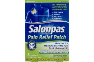 Salonpas Pain Relief Patch - 5 CT