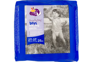 Always My Baby Boys Training Pants 2T-3T - 25 CT