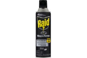 Raid Wasp & Hornet Defense System Spray