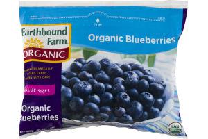Earthbound Farm Organic Blueberries