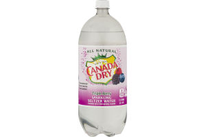 Canada Dry All Natural Sparkling Seltzer Water Triple Berry