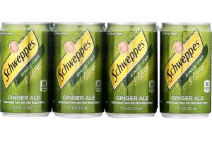 Schweppes Ginger Ale - 8 PK