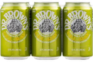 Dr. Brown's Cel-Ray Celery Soda - 6 PK