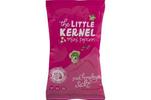 The Little Kernel Mini Popcorn Pink Himalayan Salt