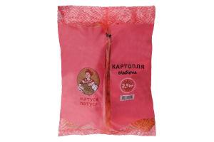 Картофель Ваши овощи отборный п/э 2,5кг