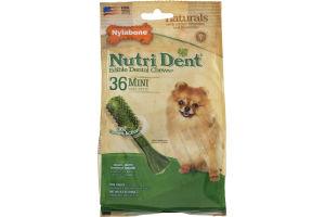 Nylabone Nutri Dent Edible Dental Chews Mini Dog Treats - 36 CT