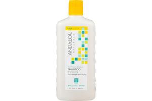 Andalou Naturals Sunflower & Citrus Shampoo
