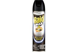 Raid Max Spider & Scorpion Killer Indoor/Outdoor