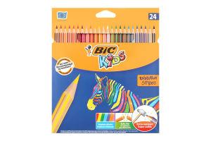 Олівці кольорові Evolution Stripes BIC 24шт