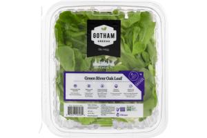 Gotham Greens Green Oak Leaf