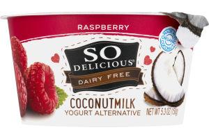 So Delicious Dairy Free Coconut Milk Raspberry