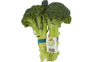 Foxy Organic Broccoli