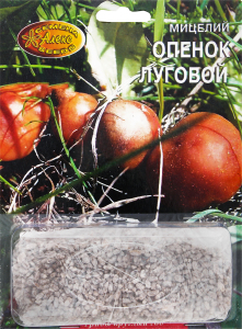 Мицелий зерновой Опенок луговой