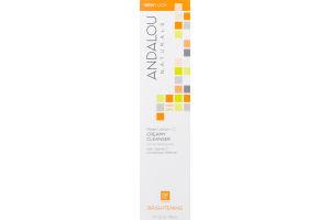 Andalou Naturals Meyer Lemon + C Creamy Cleanser