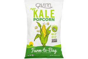 Quinn Popcorn Kale & Sea Salt