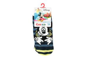 Шкарпетки Conte Kids Disney 17С-127/1СПМ р.14 344 джинс