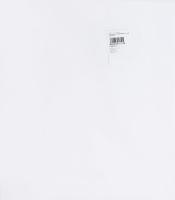 Набор бумаги флористический белый 60смх1м №P XLL 060060 ТОВ СП Украфлора 20шт