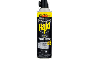 Raid Wasp & Hornet Spray