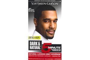 Dark & Natural 5 Minute Shampoo-in Haircolor for Men Jet Black
