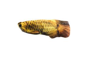 Подушка декоративная Свежая рыба 30см в ассорт