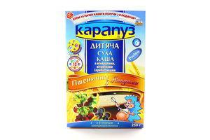 Каша Карапуз пшеничная с ягодами к/у 250г