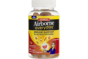 Airborne Everyday Immune Support Supplement Gummies Assorted Fruit - 50 CT