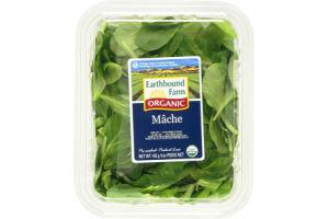 Earthbound Farm Salad Organic Mache Mix